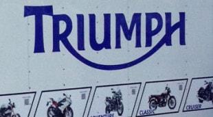 Triumph of Erie Trailer Graphics Wrap